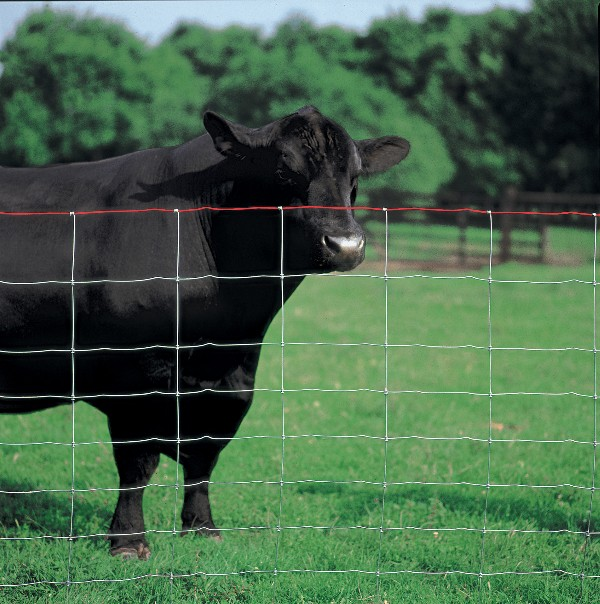 Commercial Galvanized Field Fence For Live Stock Easy Maintenance