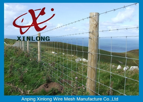 China Customized Size / Color Galvanized Field Fence No Sharp Edge 2.0mm supplier