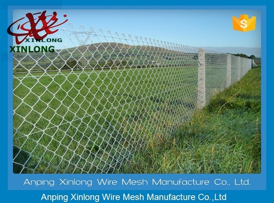 China 40 * 40mm Dark Green Chain Link Mesh Fence for Farm and Forest Protecting supplier