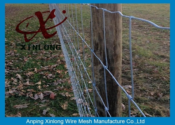 China Commercial Galvanized Field Fence For Live Stock Easy Maintenance  supplier