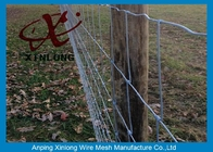 China Commercial Galvanized Field Fence For Live Stock Easy Maintenance  company