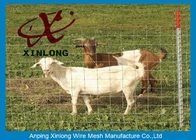 China Corrosion Resistance Welded Wire Livestock Panels With ISO9001 / 2008 Certificate factory