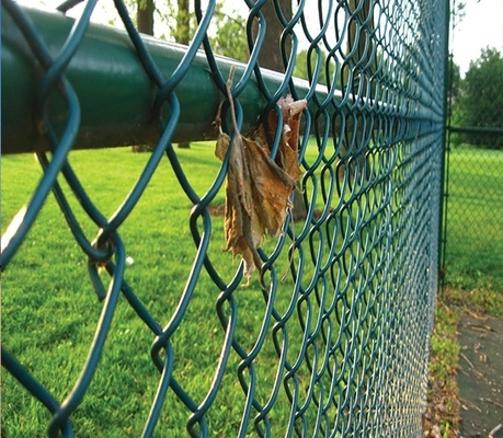 40*40MM Dark Green PVC Coated Chain Link Fence for Playground